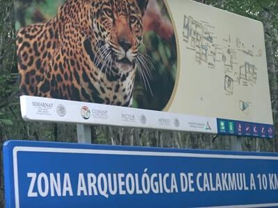 Cómo llegar a Calakmul