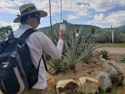 Mezcal de Oaxaca