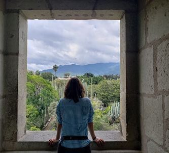 Viendo Oaxaca