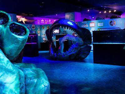 acuario interactivo